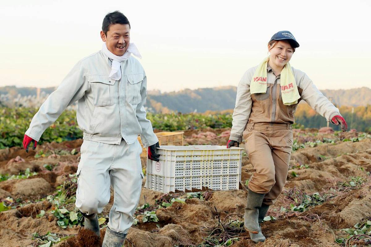 夫婦で農作業